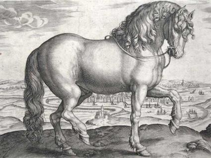 goltzius-cavall